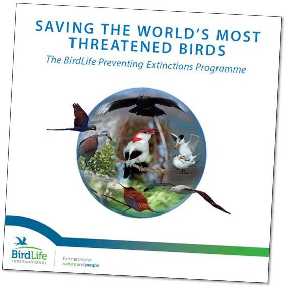 Critically Endangered Birds: A Global Audit